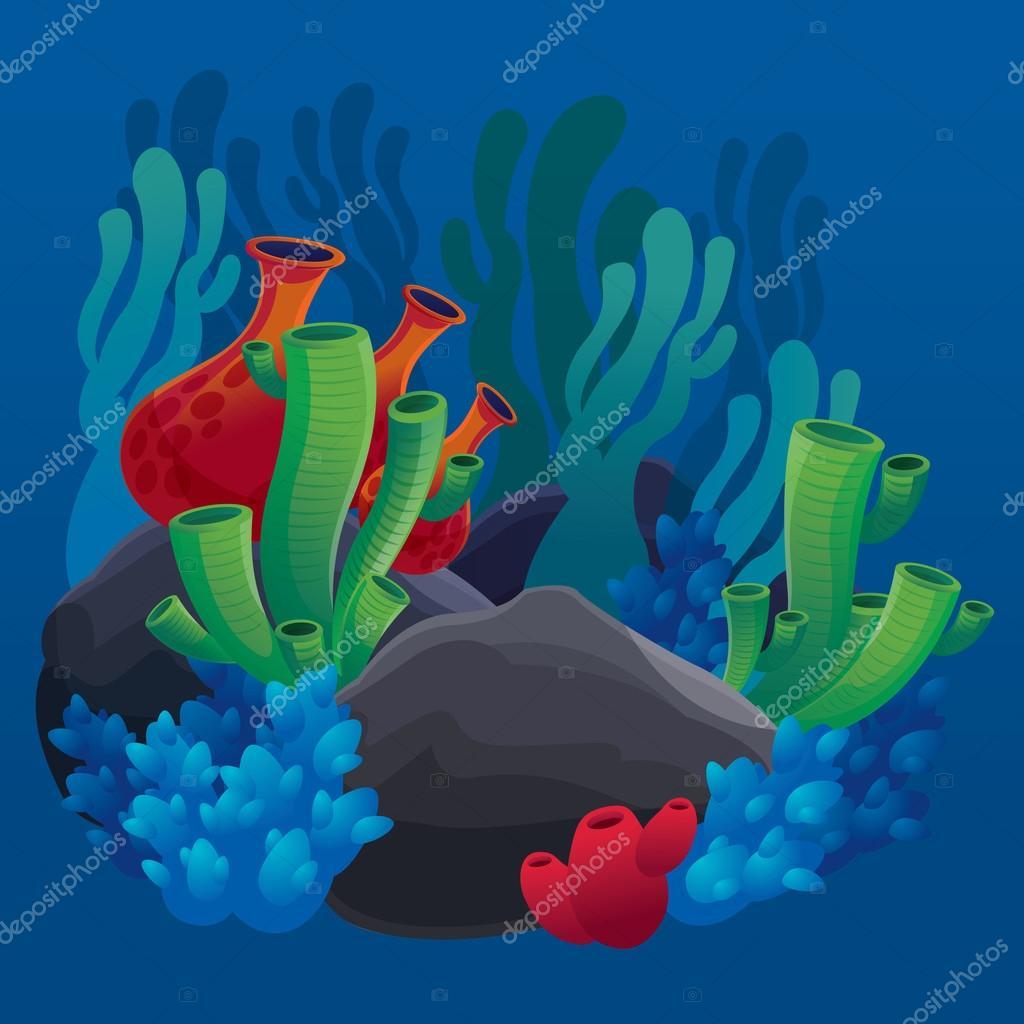 set of marine plants, corals and rocks