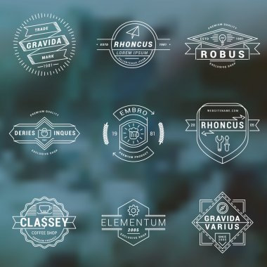 Set of Thin Line Hipster Labels, Logotypes, Insignias for Your Business. Design Template