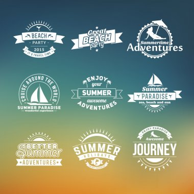 Set of summer retro design elements. Vintage ornaments and labels, tropical paradise, beach vacation, adventure and travel