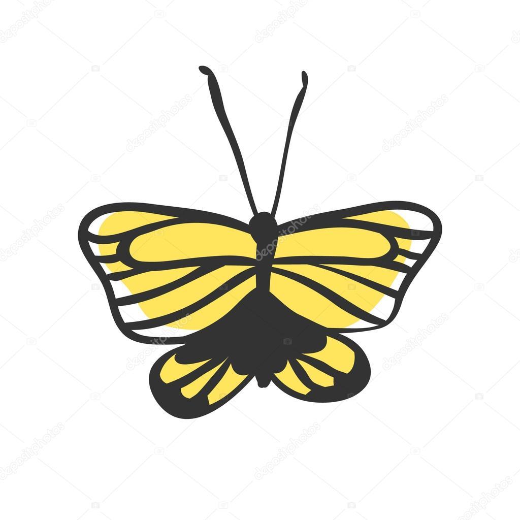 Izolovane Motyl Rucne Kreslenou Vektorove Ilustrace Dekoracni