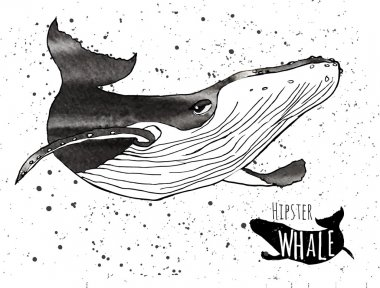 Hand drawn grunge watercolor whale. Vector illustration. Logo design