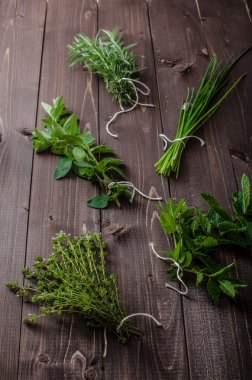 Fresh herbs from the organic garden