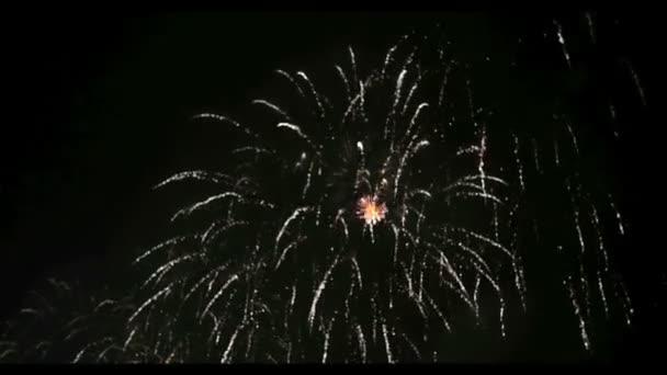 Ohňostroj ve velkých Eeuropean městě Rize, Den nezávislosti
