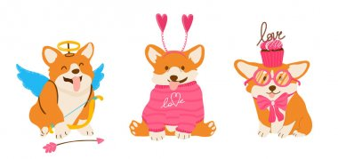 Funny vector corgis for Valentine Day. Amour dog with wings and arrows. Pets in pink sweater and bow with cupcakes. icon