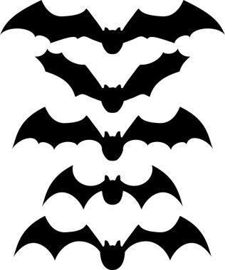 Vector package bats