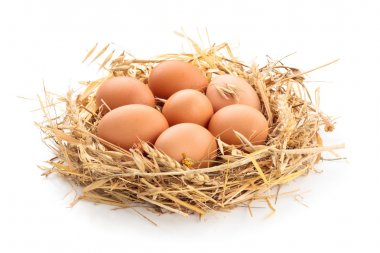 Chicken eggs  in nest of straw. Isolated on white  background. stock vector
