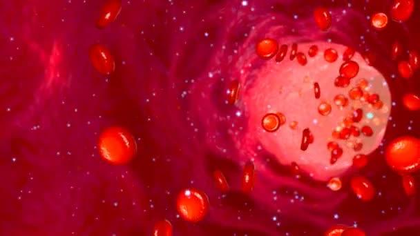Buňky glukózy v krvi