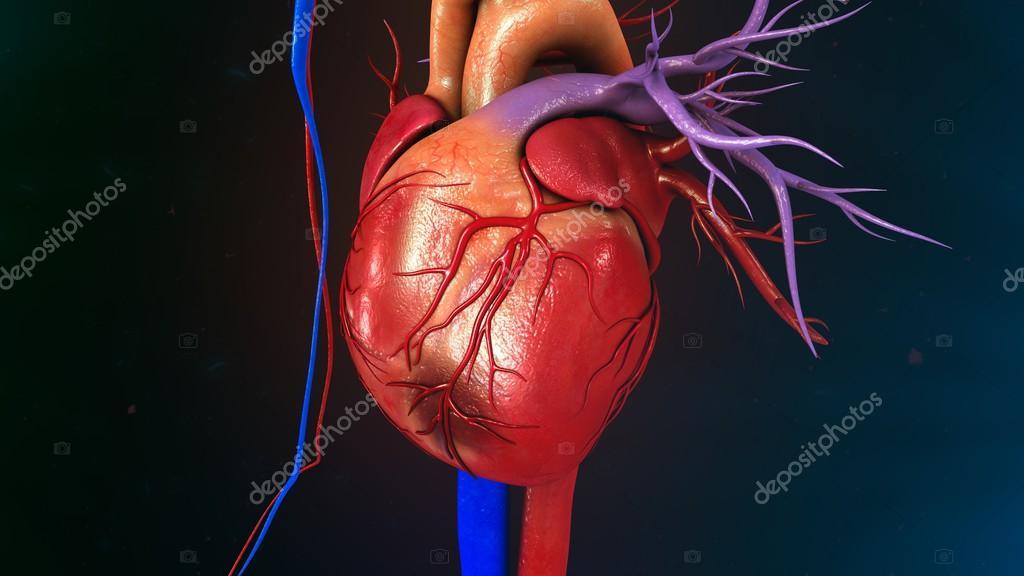 Herz-Myokardinfarkt — Stockfoto © sciencepics #112248732