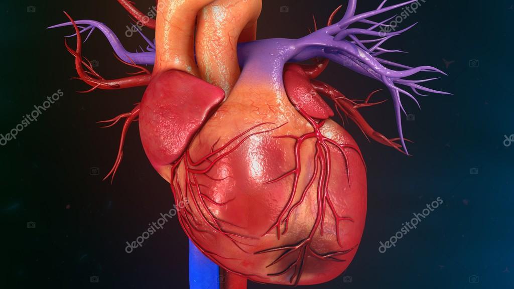 Herz-Myokardinfarkt — Stockfoto © sciencepics #112248782