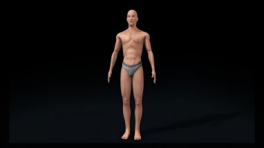 weak human body concept