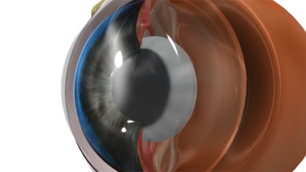 Oční čočka medicína animace