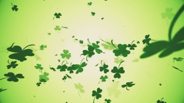 Seamlessly looping falling shamrocks motion background animation for Saint Patricks Day.
