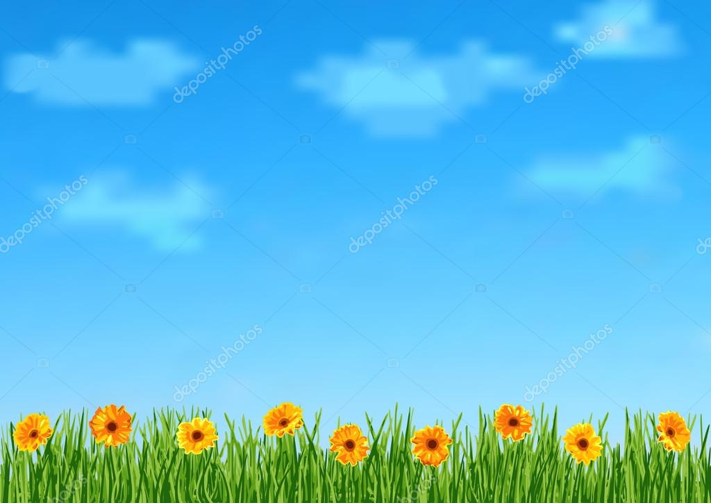 Background with grass and orange gerbera flowers