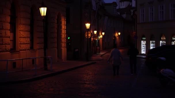 zoomování na Karlově mostě v noci na Vltavské riviéřeDvě bílé labutě, kachny na hladině Vltavy u břehu a v pozadí budovy v centru Prahy