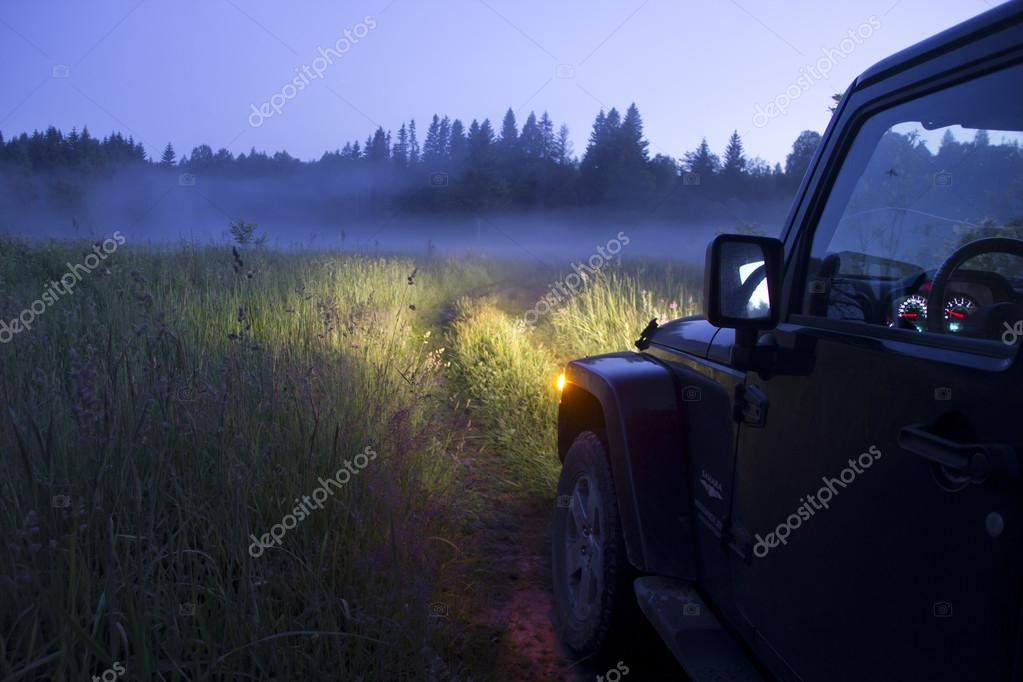 jeep wrangler on a forest road