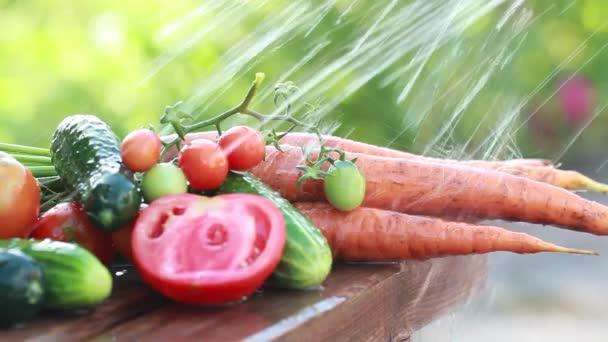 Čerstvá zelenina na povaze nalijte čistou vodu