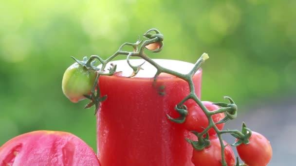 Splash rajčatová šťáva a šťavnatých zralých rajčat v přírodě letní den