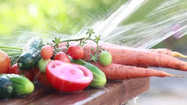 A tiszta víz spray lédús érett zöldség