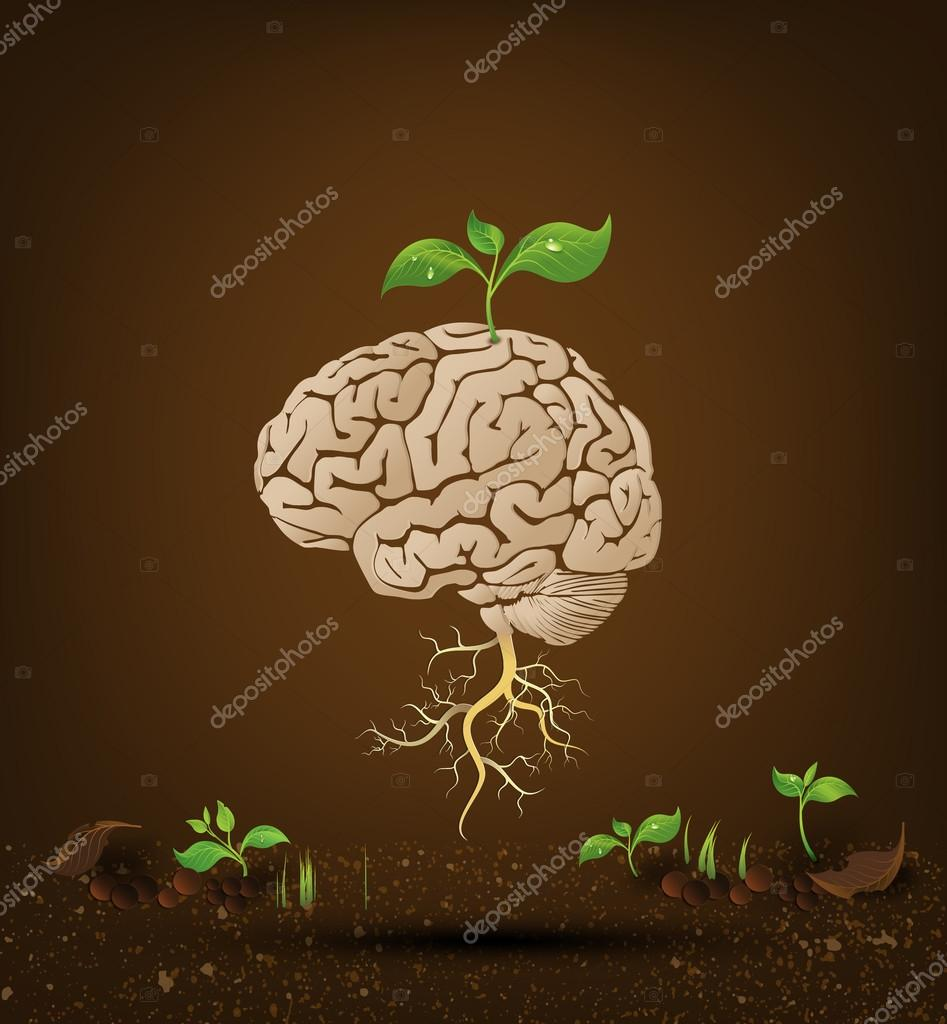 Brain tree illustration.