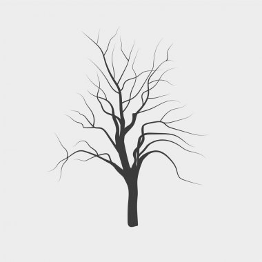 Vector drawing silhouettes of leafless tree