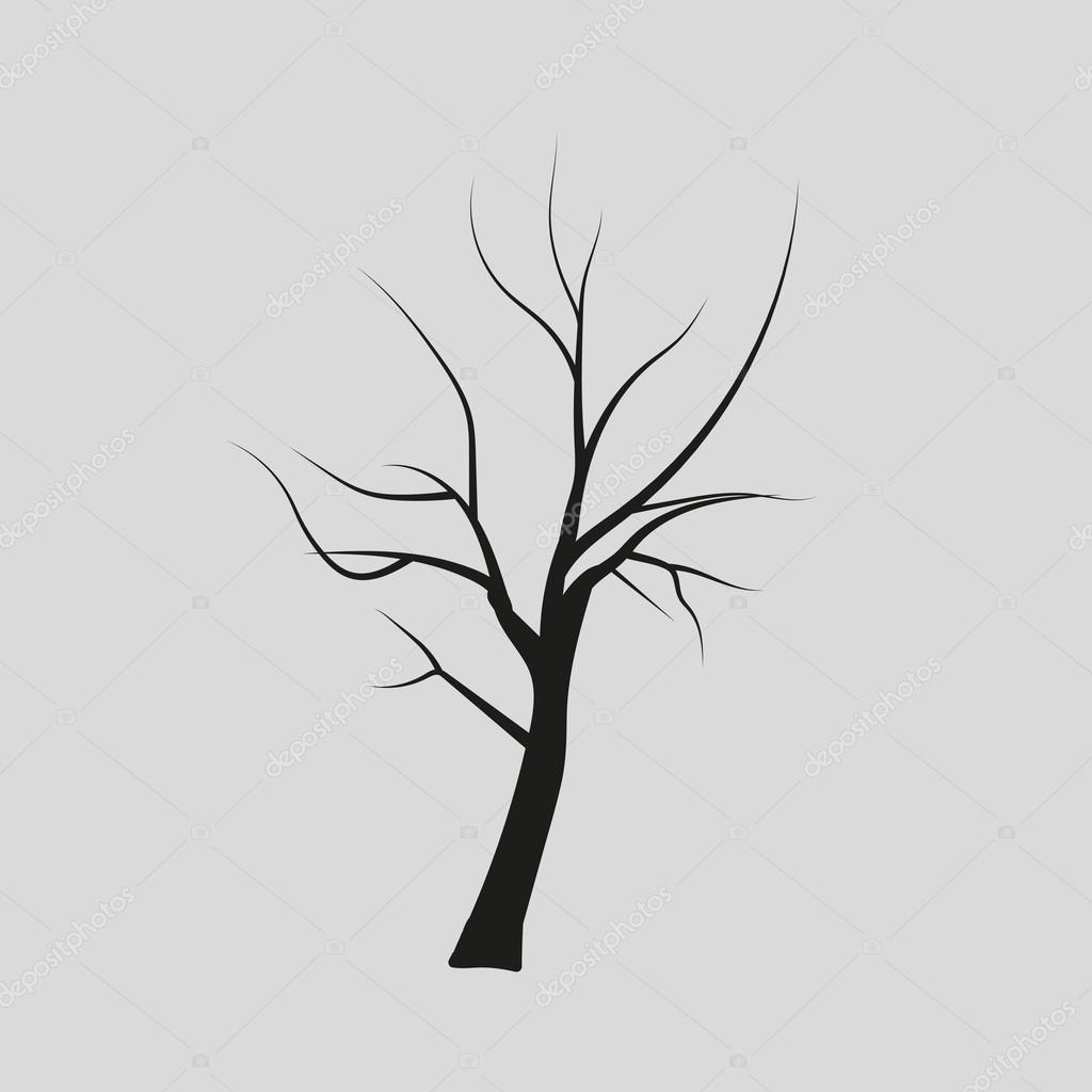 Dibujos árboles Sin Hojas Vector Siluetas De Los árboles Sin