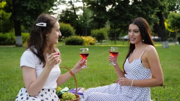 Couple of attractive girls communicate with each other. Lisbians eat strawberries and drink wine. Women have a good time together at a picnic in the summer. LGBT