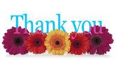 Poděkovat s květinami