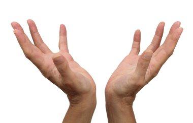 Female Healer's hands on white background