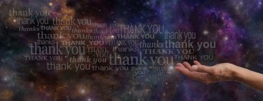 Thanking the Universe Website Banner