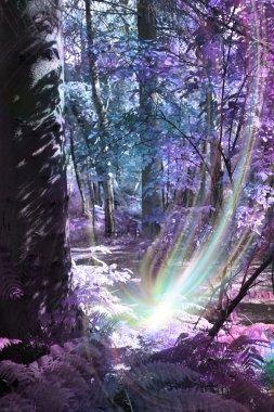 Sending Distant Healing Energy