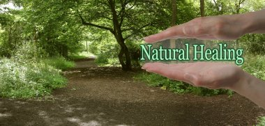 The Path To Natural Healing