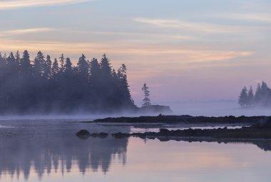 Sunrise at Schoodic Peninsula