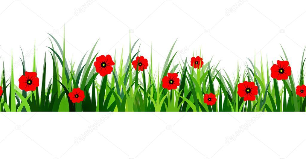 Green Grass seamless poppy