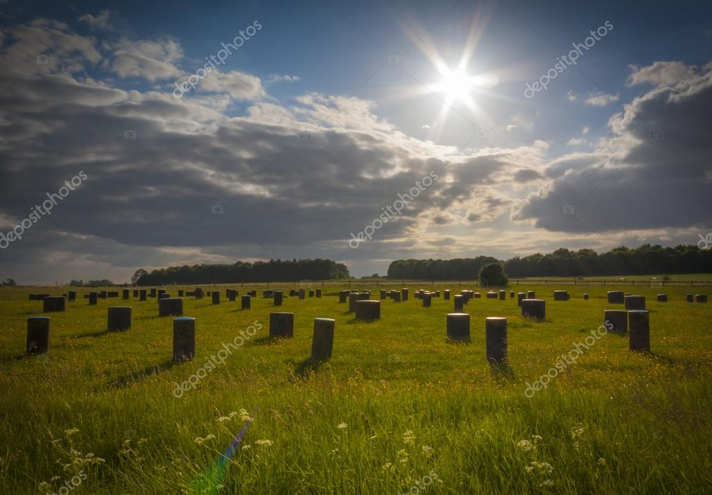 Woodhenge in Wiltshire under a blue sky