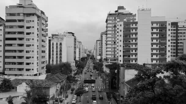 NITEROI, RIO DE JANEIRO, BRASIL - CIRCA 2020: Vehicle traffic on a busy avenue in a big city. Urban mobility is part of the populations daily life. Cars, buses, trucks and bicycles can be seen. Video in black and white.