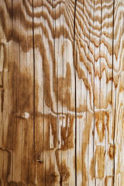 wooden board background texture