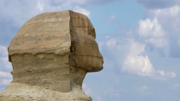 Timelapse. Sphinx head close-up. Giza Egypt.