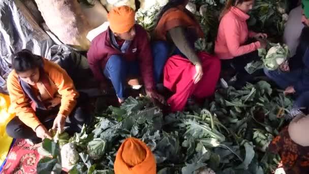 Új-Delhi, India 2020. december 25.: Indiai szikh és hindu gazdák Punjabból, Uttar Pradeshből és Uttarakhandból tiltakoznak a Delhi-UP határnál. A gazdák tiltakoznak az új gazdatörvények ellen.