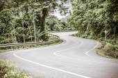 Vintage tonica immagine di strada curva serpente