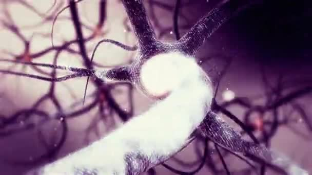 Animation of Real Neuron synapse network. Infinite Loop inside the human brain in Full HD
