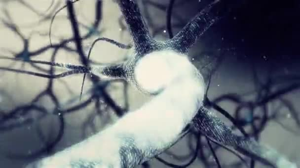Real Neuron synapse network 3D animation. Infinite Loop inside the human brain in Full HD