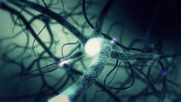 Green Neuron synapse network 3D animation with light beams and information transfers. Infinite Loop inside the human brain.