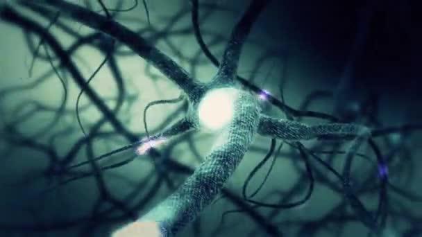 Zelené Neuron synapse 3d animaci sítě s světelných paprsků a přenosu informací. Nekonečná smyčka uvnitř lidského mozku