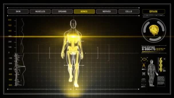 Lidské anatomie chůzi s žlutým Touch Screen Scan infografiky v 3d RTG - smyčka