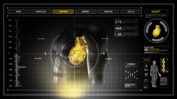 Human Heart X-Ray Rotates on Futuristic Touch Screen Scan Interface - LOOP