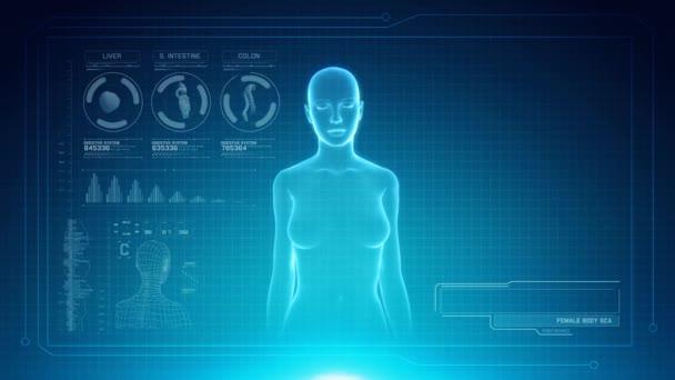Ženské trávicí systém anatomie na rozhraní virtuální futuristické modré dotykové obrazovky s zástupný symbol pro tituly. Bezešvá smyčka