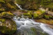 Cascata in West Tatra, Slovacchia