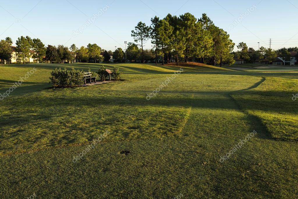Golf course sunrise and landscaped grass.  Orlando, Florida