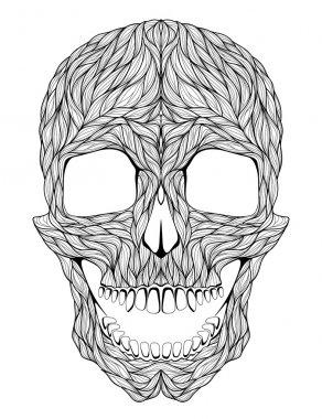 Psychedelic skull illustration