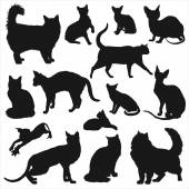 Silhouettes of cats set